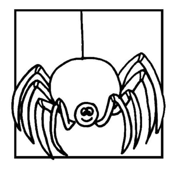 Dibujos para colorear de Arañas, arácnidos, Plantillas para colorear ...