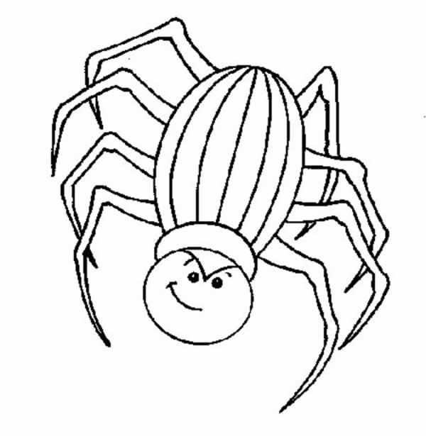 Dibujos para colorear de Arañas, arácnidos, Plantillas para ...