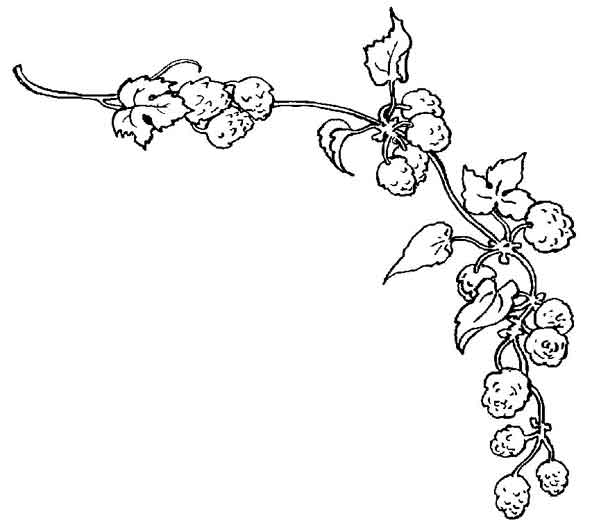 dibujos para colorear de decoracion plantillas para