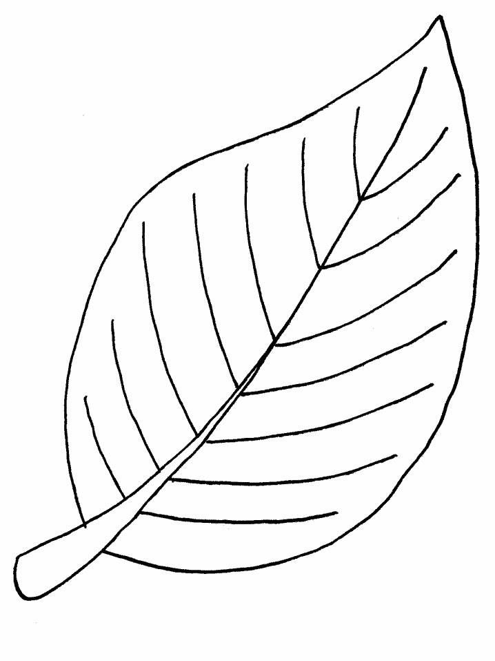 Dibujos para colorear de Hojas de los árboles, Plantillas para ...