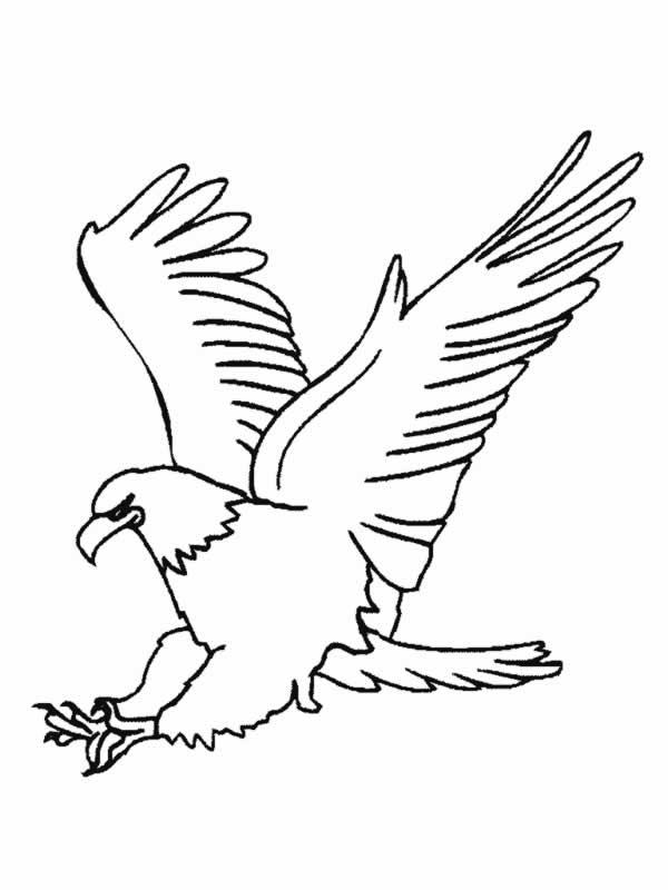 Image Of Aguila Poderosa Para Colorear Cómo dibujar Poderosa Águila ...